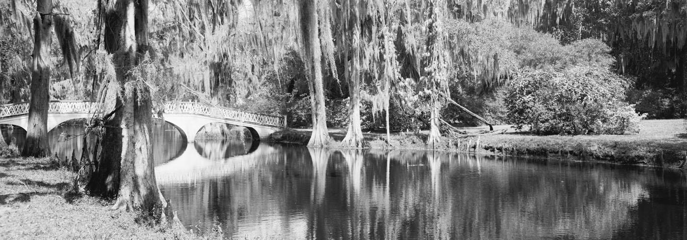 A river with a stone bridge and drooping willow trees almost touching the water and breaking the reflection in the water